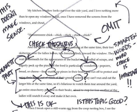 College Essay On A Service Trip   Original Papers  Essay On College A Trip Service
